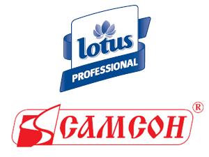 Планирование продаж товаров группы «Санитарно-гигиенические товары»